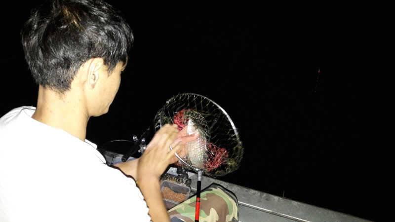 fish_pay_01010780.jpg