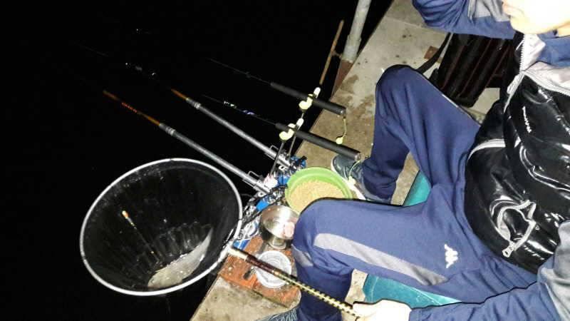 fish_pay_01011552.jpg