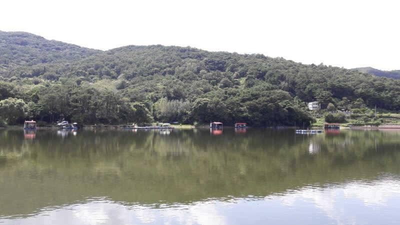 fish_pay_01021217.jpg