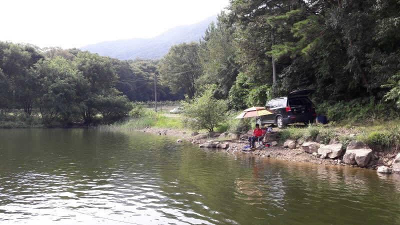 fish_pay_01021746.jpg