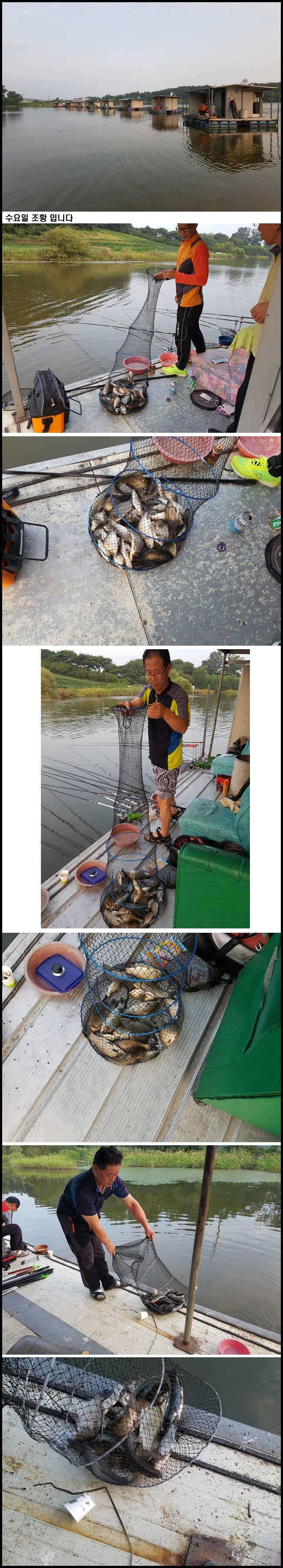 fish_pay_01263871.jpg