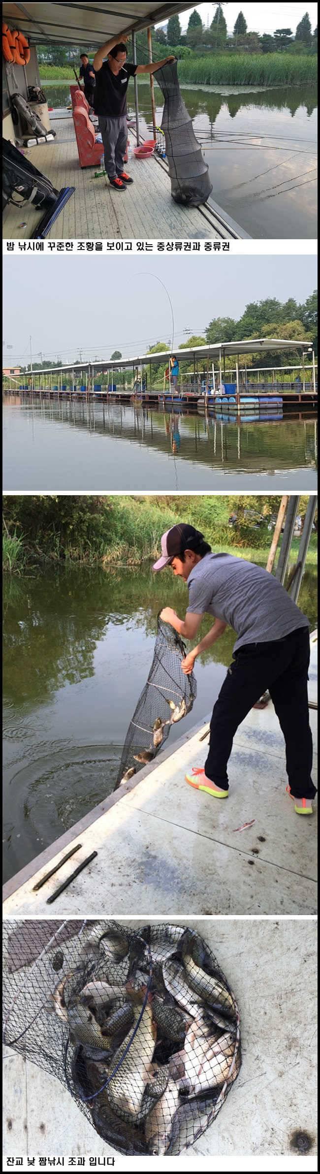 fish_pay_01264113.jpg