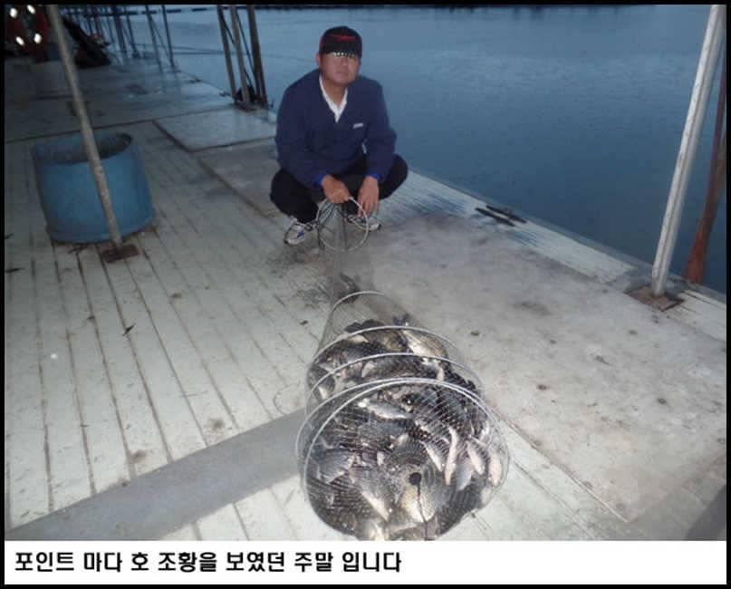 fish_pay_01265896.jpg