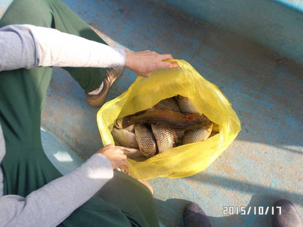 fish_pay_01570118.jpg