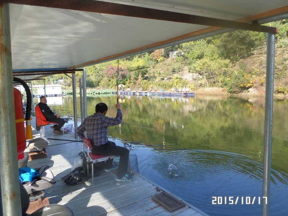 fish_pay_0157187.jpg