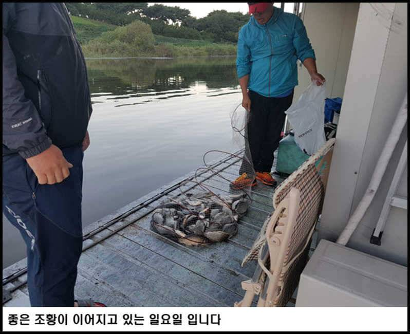 fish_pay_02024725.jpg