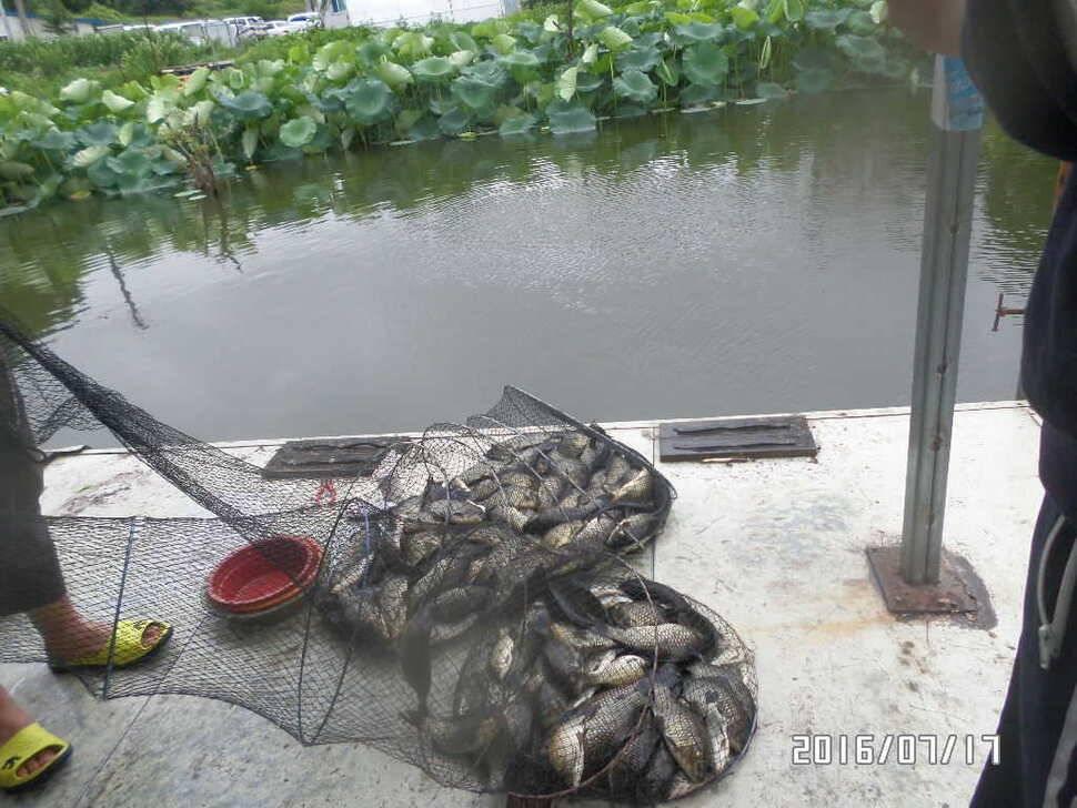 fish_pay_02422359.jpg