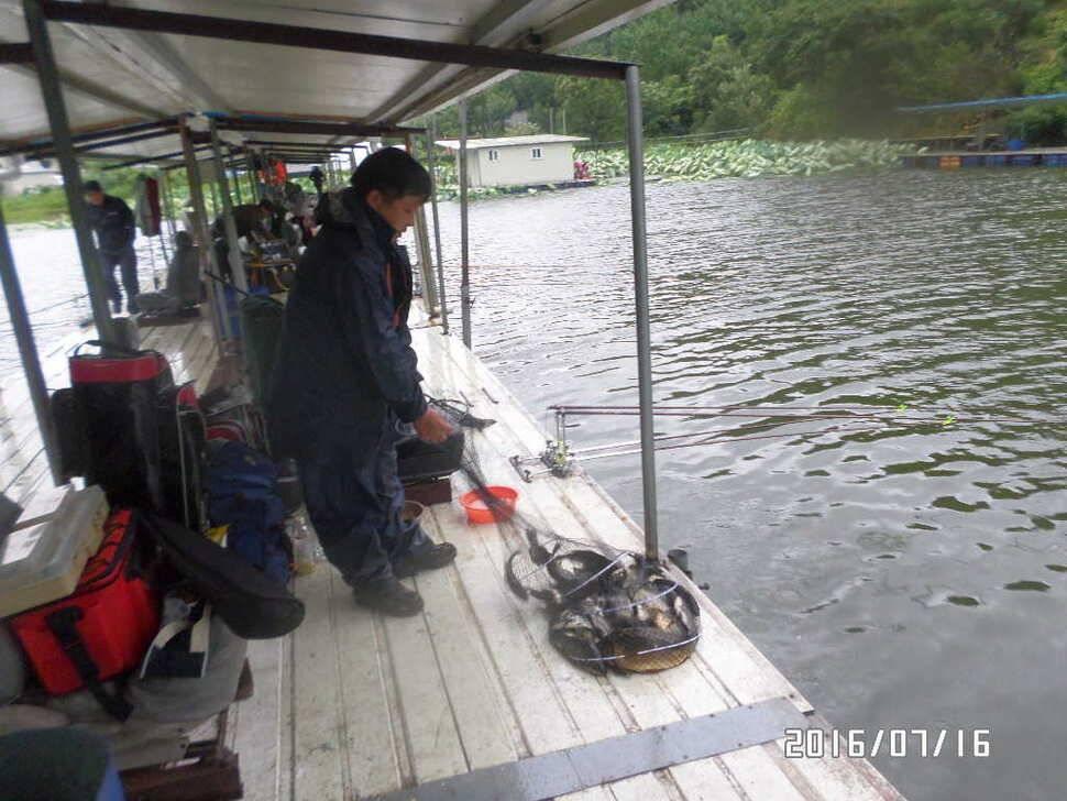 fish_pay_02424350.jpg