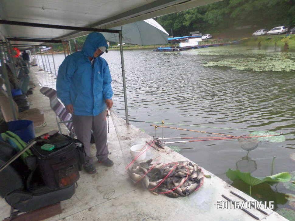 fish_pay_02431515.jpg