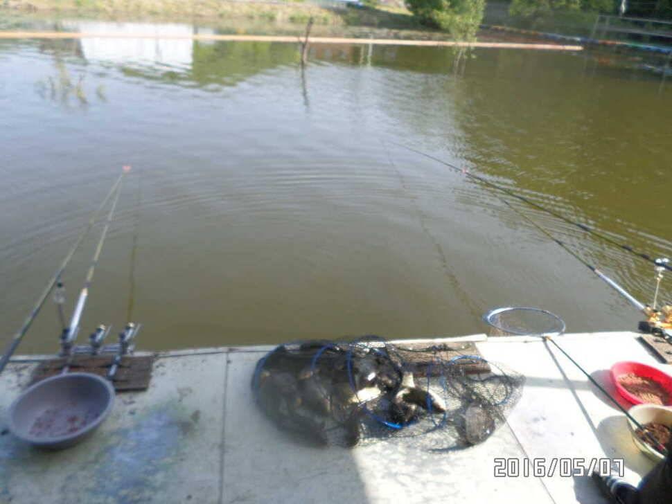 fish_pay_02432313.jpg