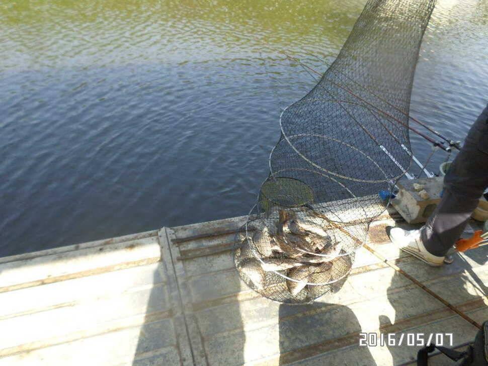 fish_pay_02432868.jpg