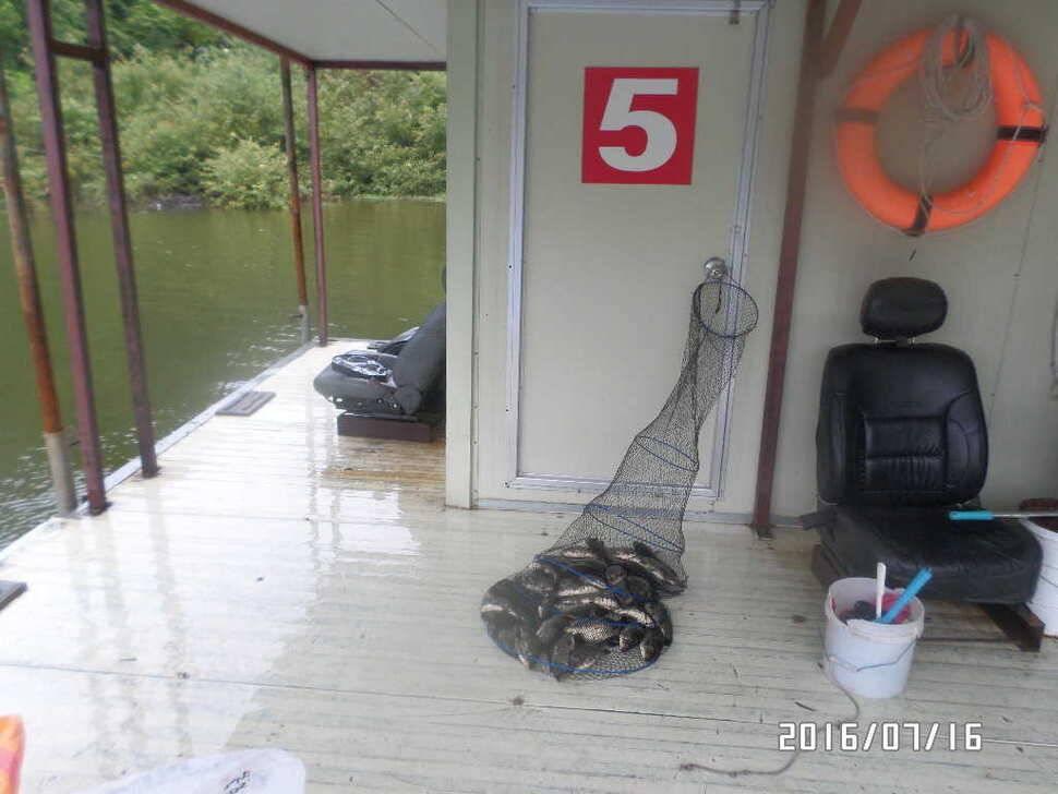 fish_pay_02435027.jpg