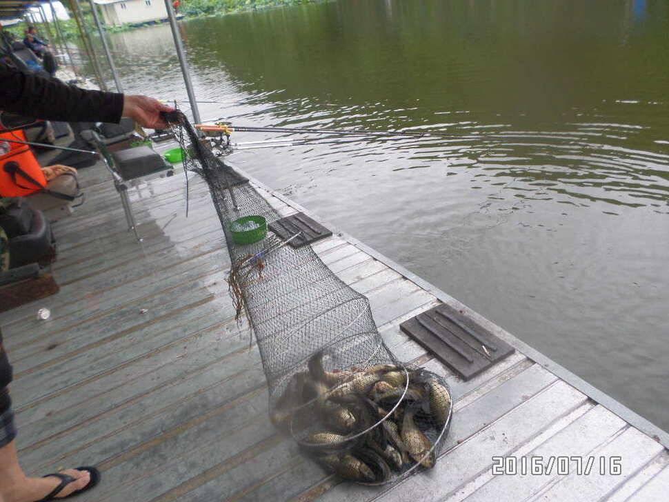 fish_pay_02435666.jpg
