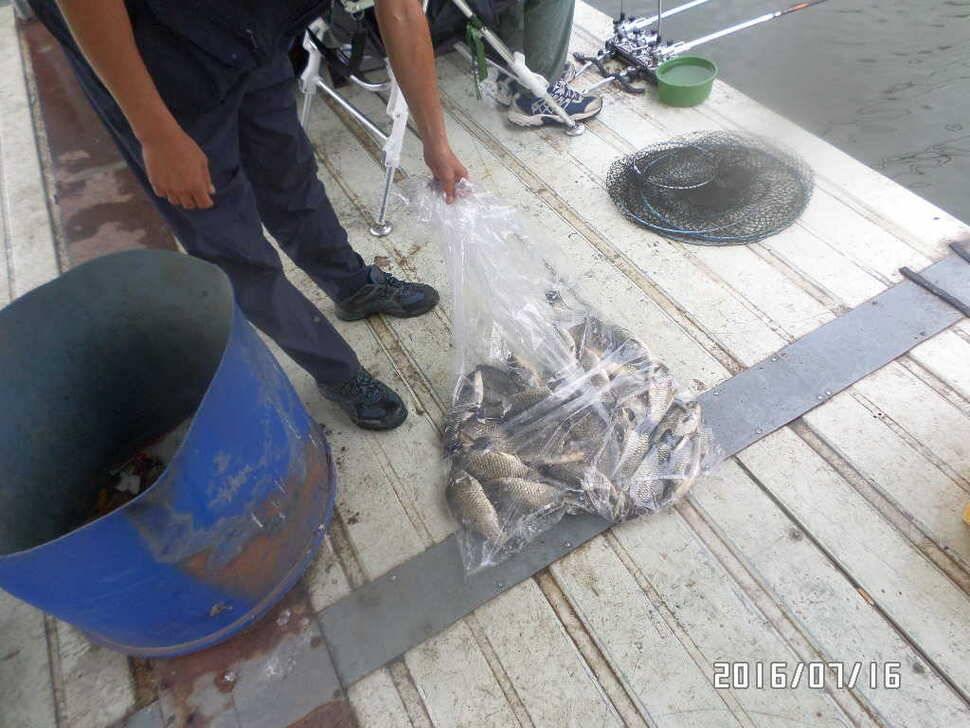 fish_pay_02440949.jpg