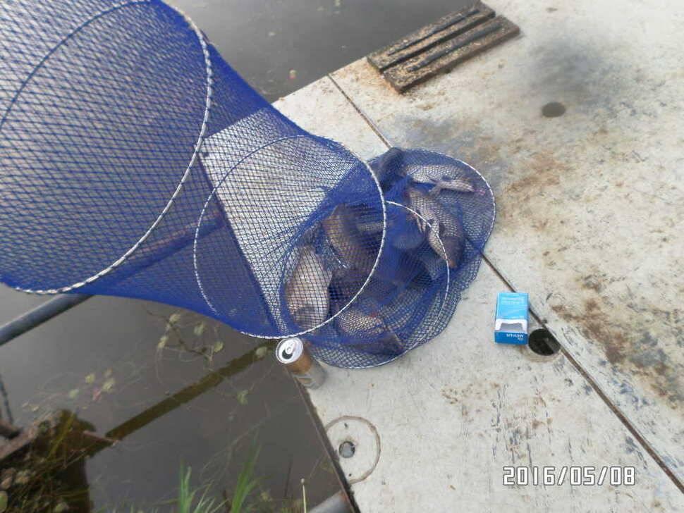 fish_pay_02442057.jpg