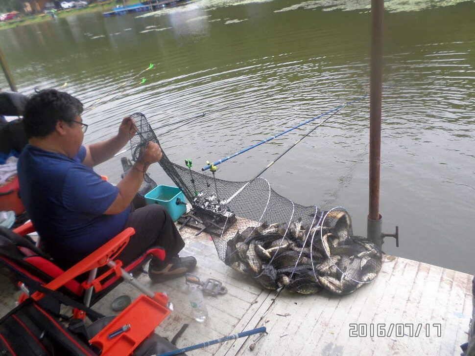 fish_pay_0244558.jpg