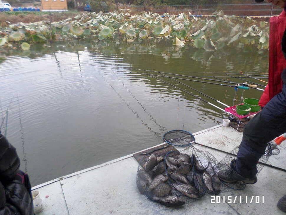 fish_pay_02581390.jpg
