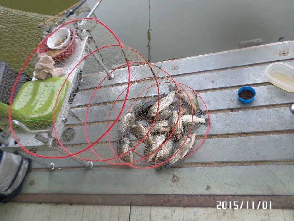 fish_pay_02583879.jpg