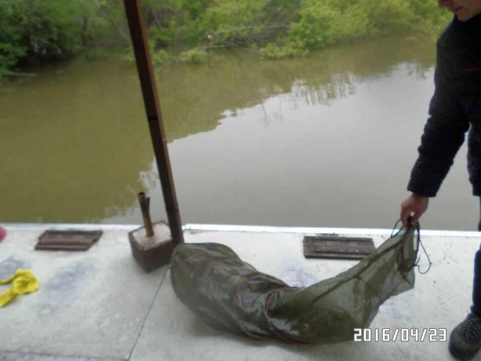 fish_pay_03211475.jpg