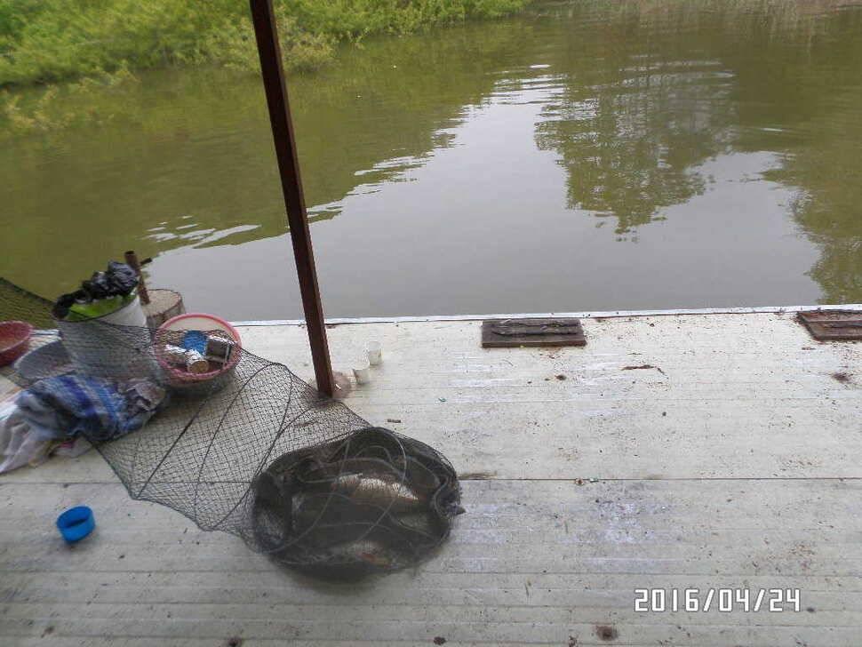 fish_pay_03215081.jpg