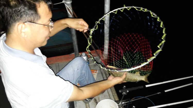 fish_pay_03261467.jpg
