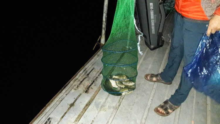 fish_pay_03263612.jpg