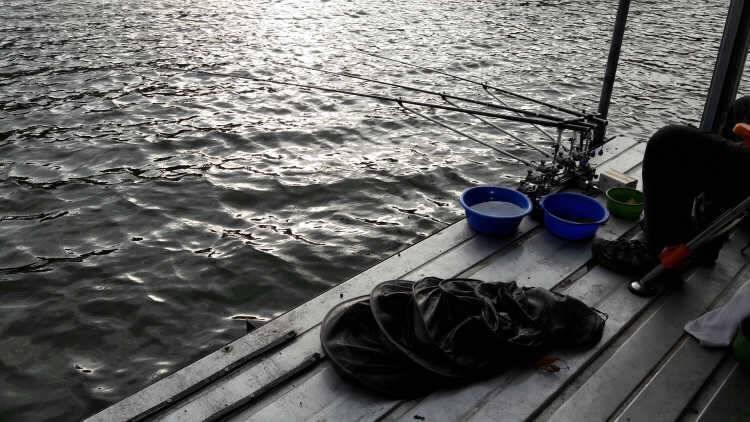 fish_pay_03273424.jpg