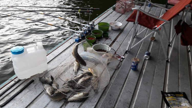fish_pay_03274028.jpg