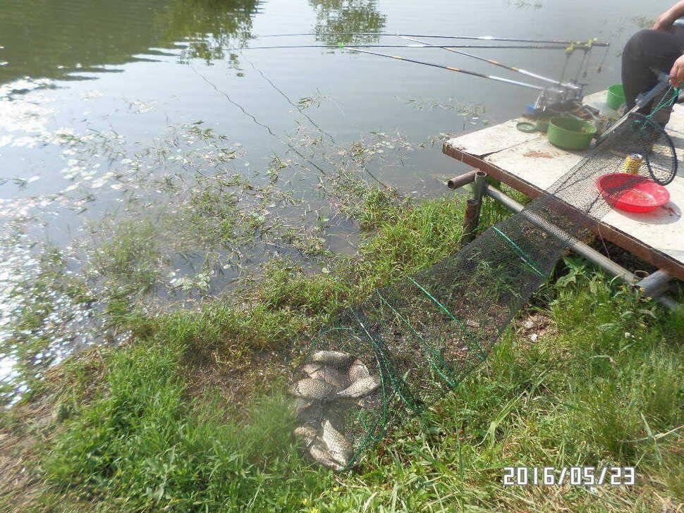 fish_pay_03350826.jpg