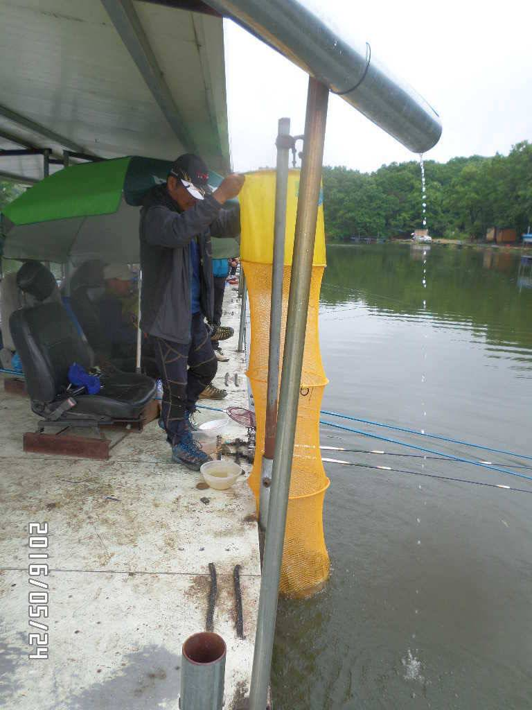 fish_pay_03353034.jpg