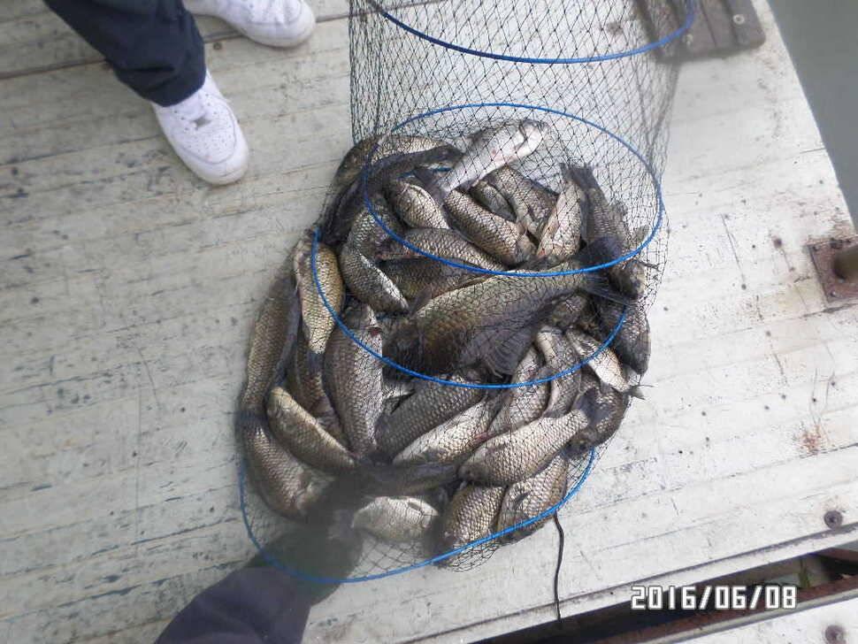 fish_pay_04380014.jpg