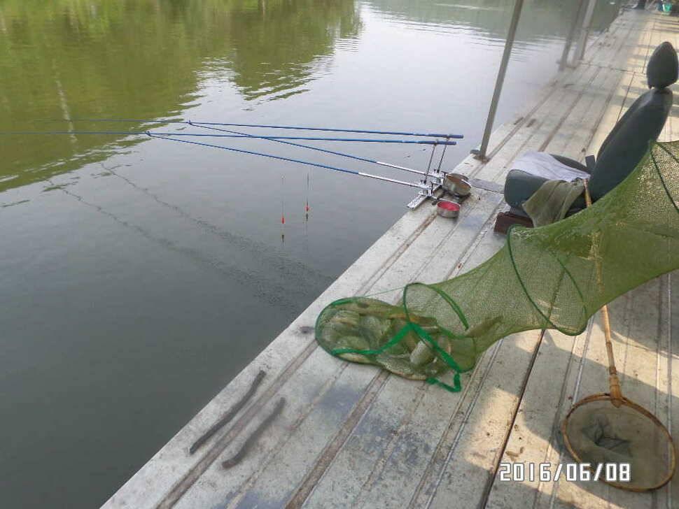 fish_pay_04381512.jpg