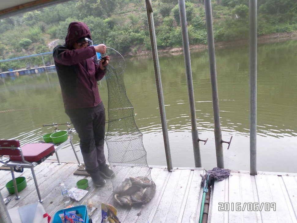 fish_pay_0438287.jpg