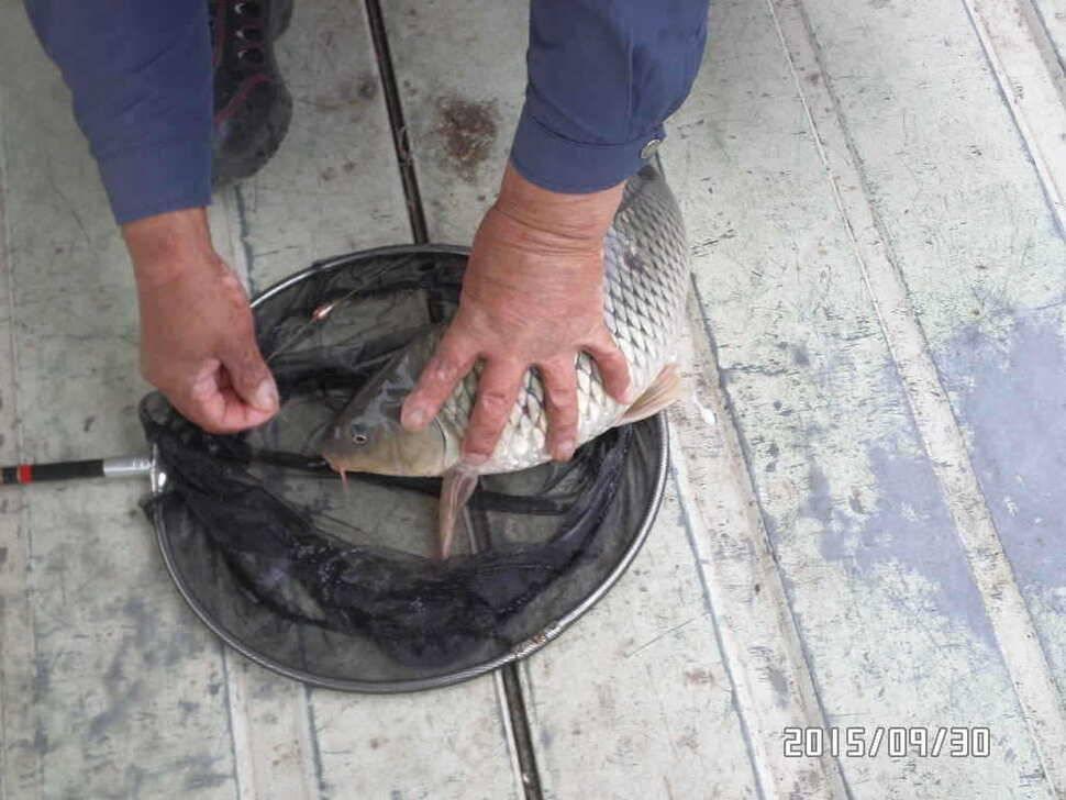 fish_pay_04560466.jpg