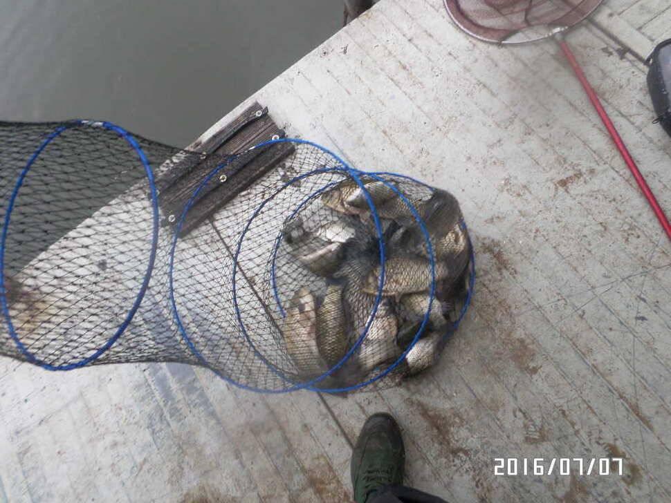 fish_pay_05111580.jpg