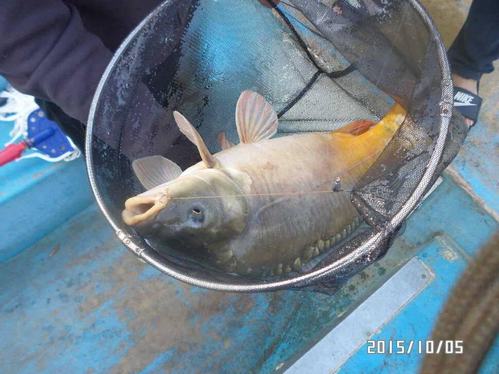 fish_pay_05420435.jpg