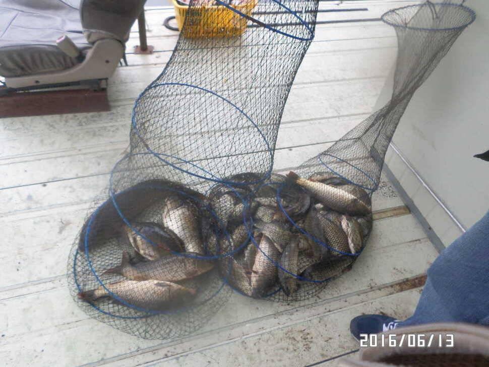 fish_pay_06002056.jpg