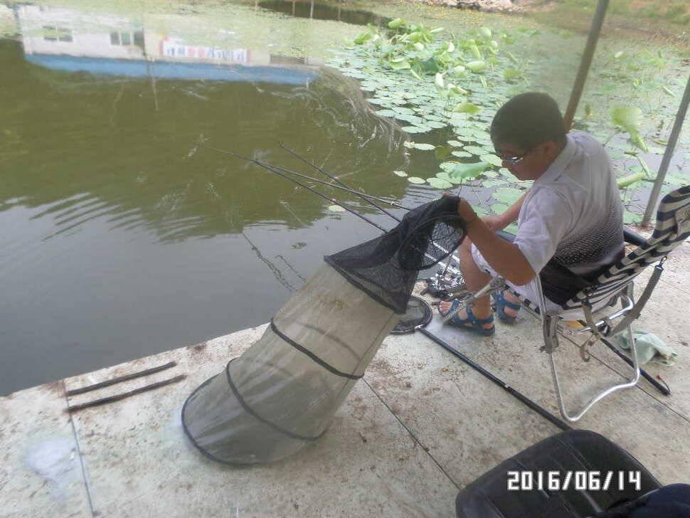 fish_pay_06004346.jpg