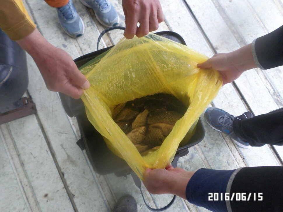 fish_pay_06011280.jpg