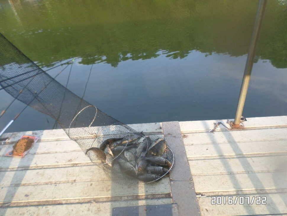 fish_pay_06062938.jpg