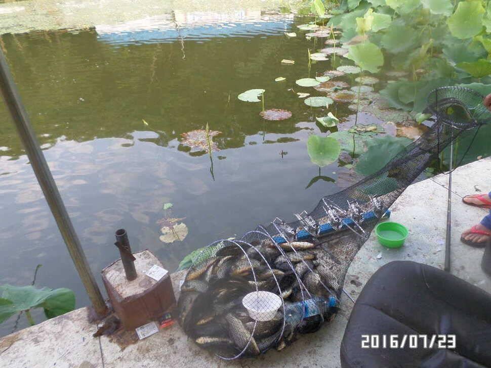 fish_pay_06063762.jpg