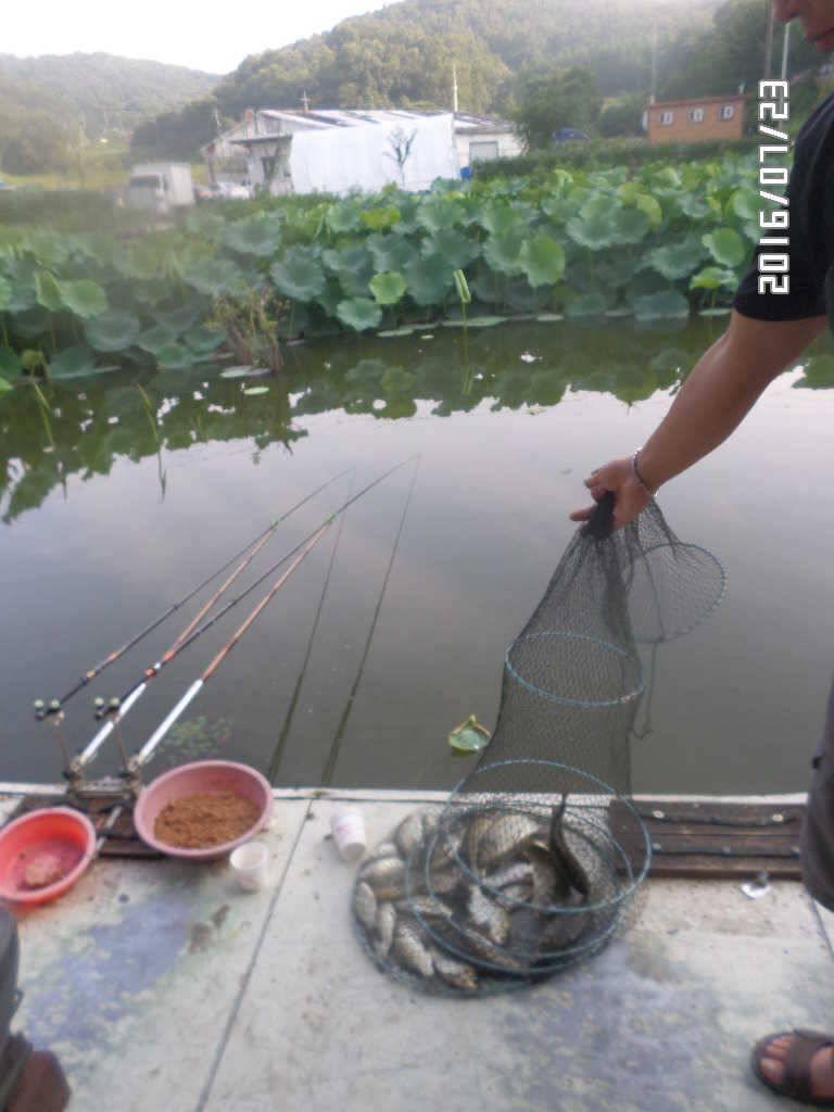 fish_pay_06065038.jpg