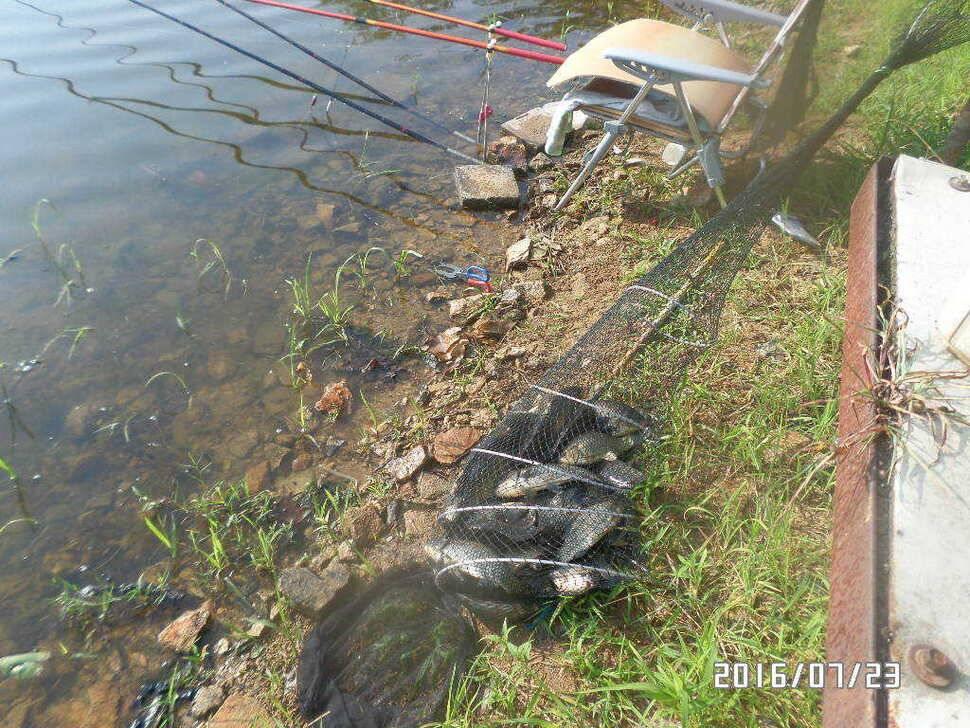 fish_pay_06065817.jpg