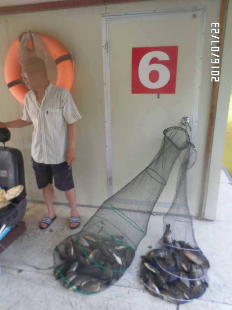 fish_pay_06071152.jpg
