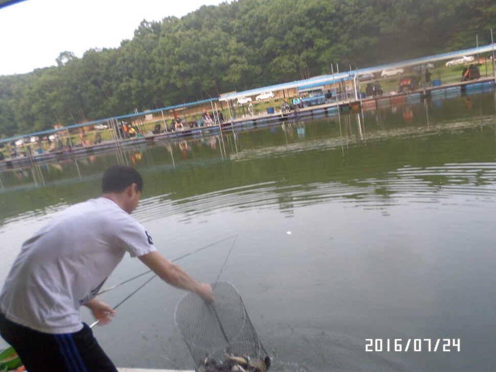 fish_pay_06075424.jpg
