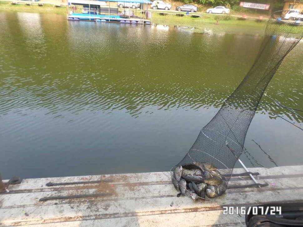 fish_pay_06081637.jpg