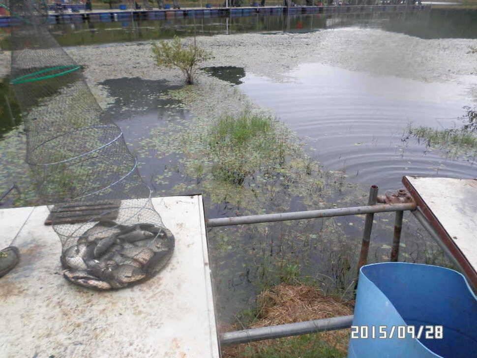 fish_pay_06084768.jpg