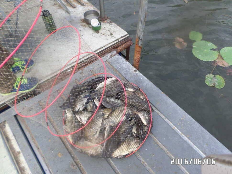 fish_pay_06113986.jpg