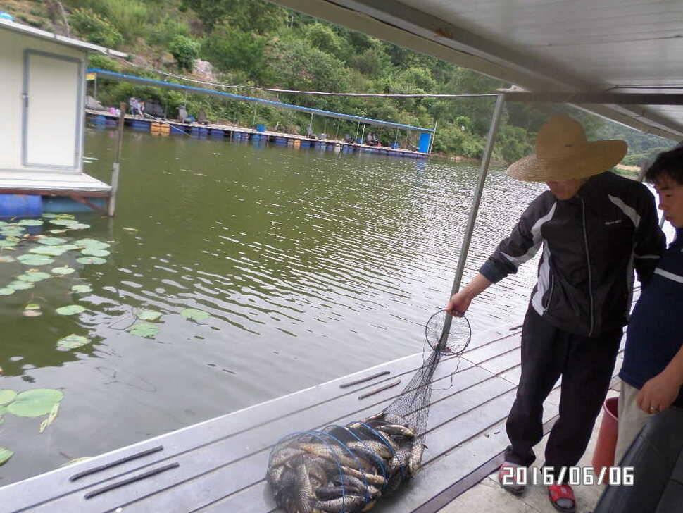 fish_pay_06120457.jpg