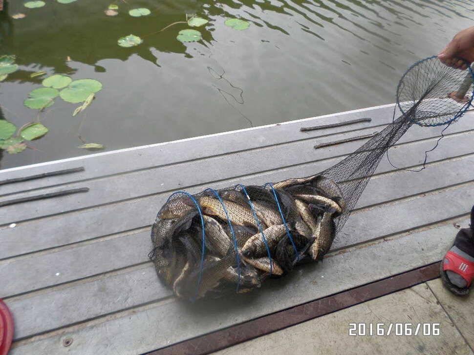 fish_pay_06120966.jpg